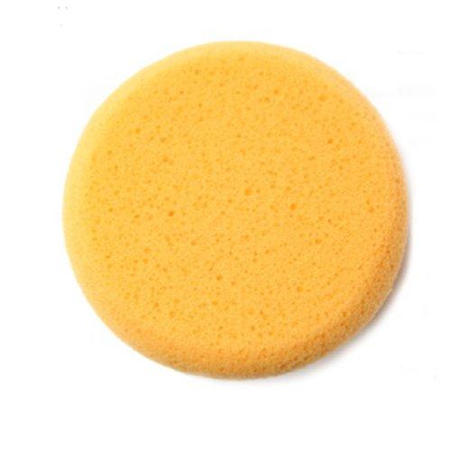 Hydra Sponge klein
