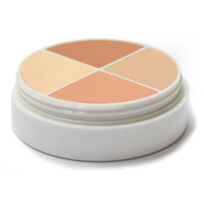 Ben Nye Creme Highlight Wheel Camouflage Make up Modellage