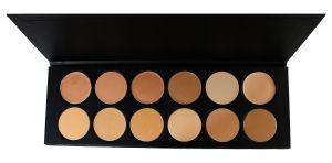Camouflage Matte Foundation Make up Palette 12 Farben CF-Palette